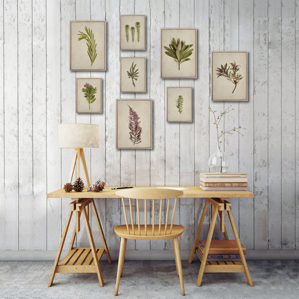 Fynbos Garden Gallery Wall - 8x Art prints, set 1