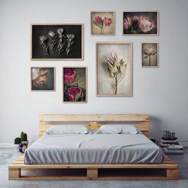 Mixed Protea Gallery Wall - 7x Art prints