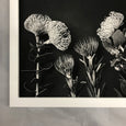 Monochrome Pins - 2x Large Art prints, set 1