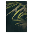 Unframed Art Print - Dark Foliage 2