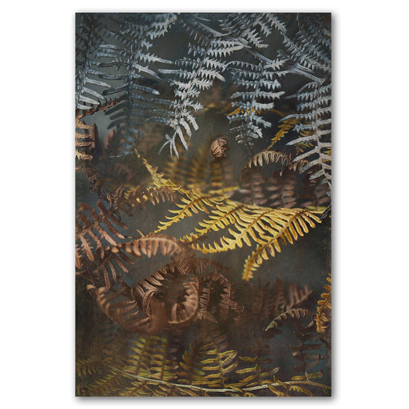 Earthy Ferns 1