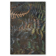 Unframed Art Print - Earthy Ferns 2
