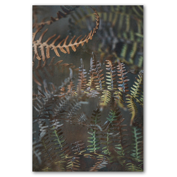 Earthy Ferns 2
