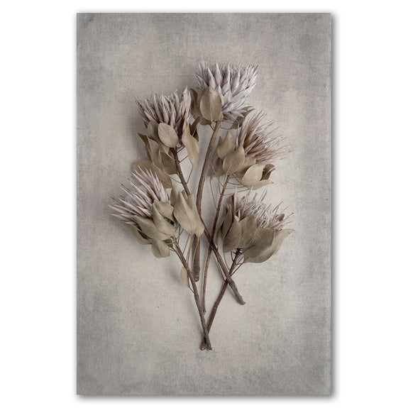Unframed Art Print - Everlasting 1