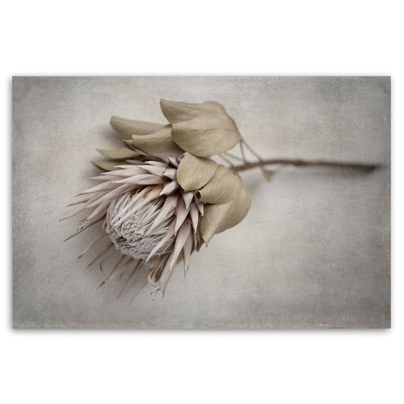 Unframed Art Print - Everlasting 4