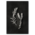 Unframed Art Print - Monochrome Pins 2