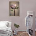 Protea Still - 1x Large Art print