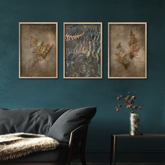 Earthy Ferns - 3x A2 Art prints, set 1