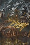 Earthy Ferns - 3x A2 Art prints, set 2