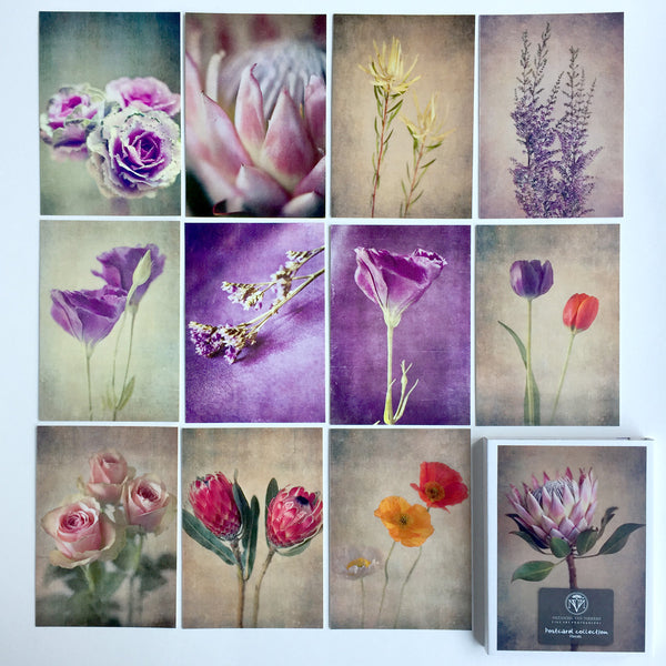 Postcard Collections - Florals