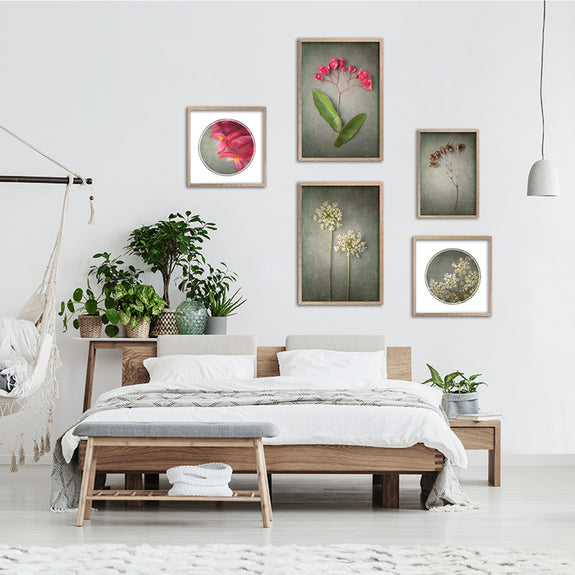 Foraged Gallery Wall - 5x Art prints
