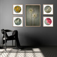Foraged Gallery wall - 5x Art prints, set 5
