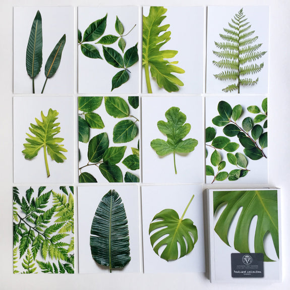 Postcard Collections - Greenery
