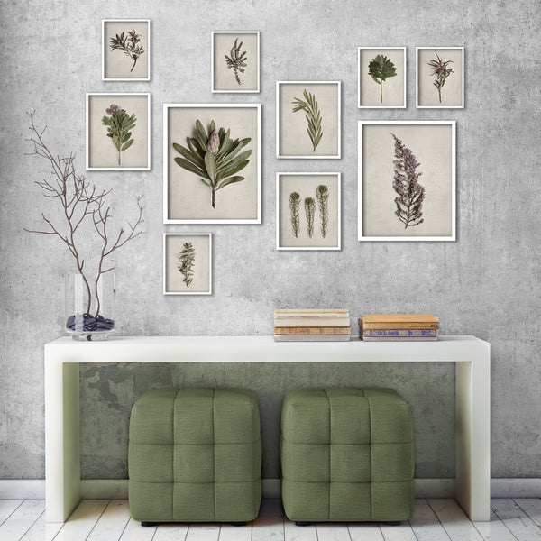 Fynbos Garden Gallery Wall - 10x Art prints