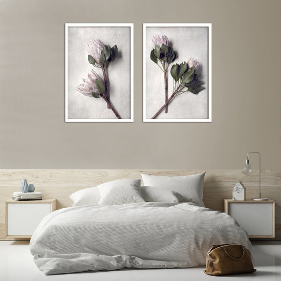 Pale Proteas - 2x Large Art Prints, set 2