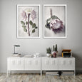 Protea Anatomy - 2x Large Art Prints, set 2