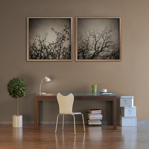 Reaching Trees - 2x square Art Prints