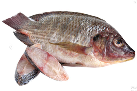 Bulty Fish 1 Kilo