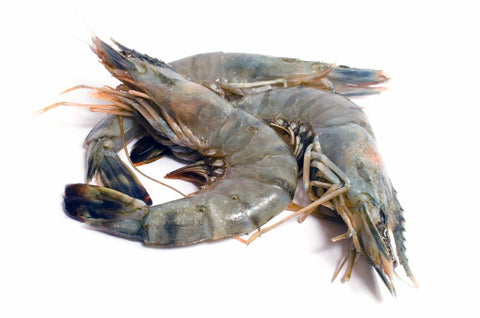 Prawns Large 500 Gm