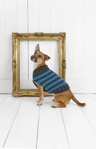 Striped Dog Coat in Stylecraft Life Chunky (9179)