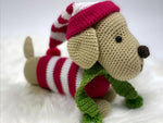 Weenie Dog Crochet Kit and Pattern in Deramores Yarn