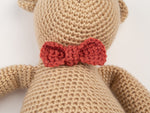 Teddy Bear Crochet Kit and Pattern in Deramores Yarn