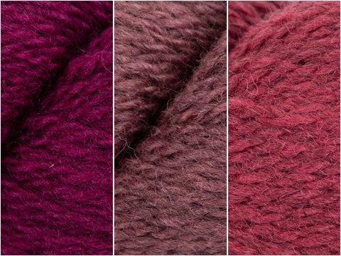Pretty Pink Colour Pack in Baa Ram Ewe Winterburn DK