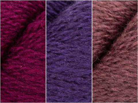 Purple Punch Colour Pack in Baa Ram Ewe Winterburn DK