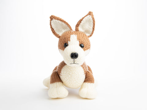 Pembroke Welsh Corgi by Amanda Berry in Deramores Studio DK