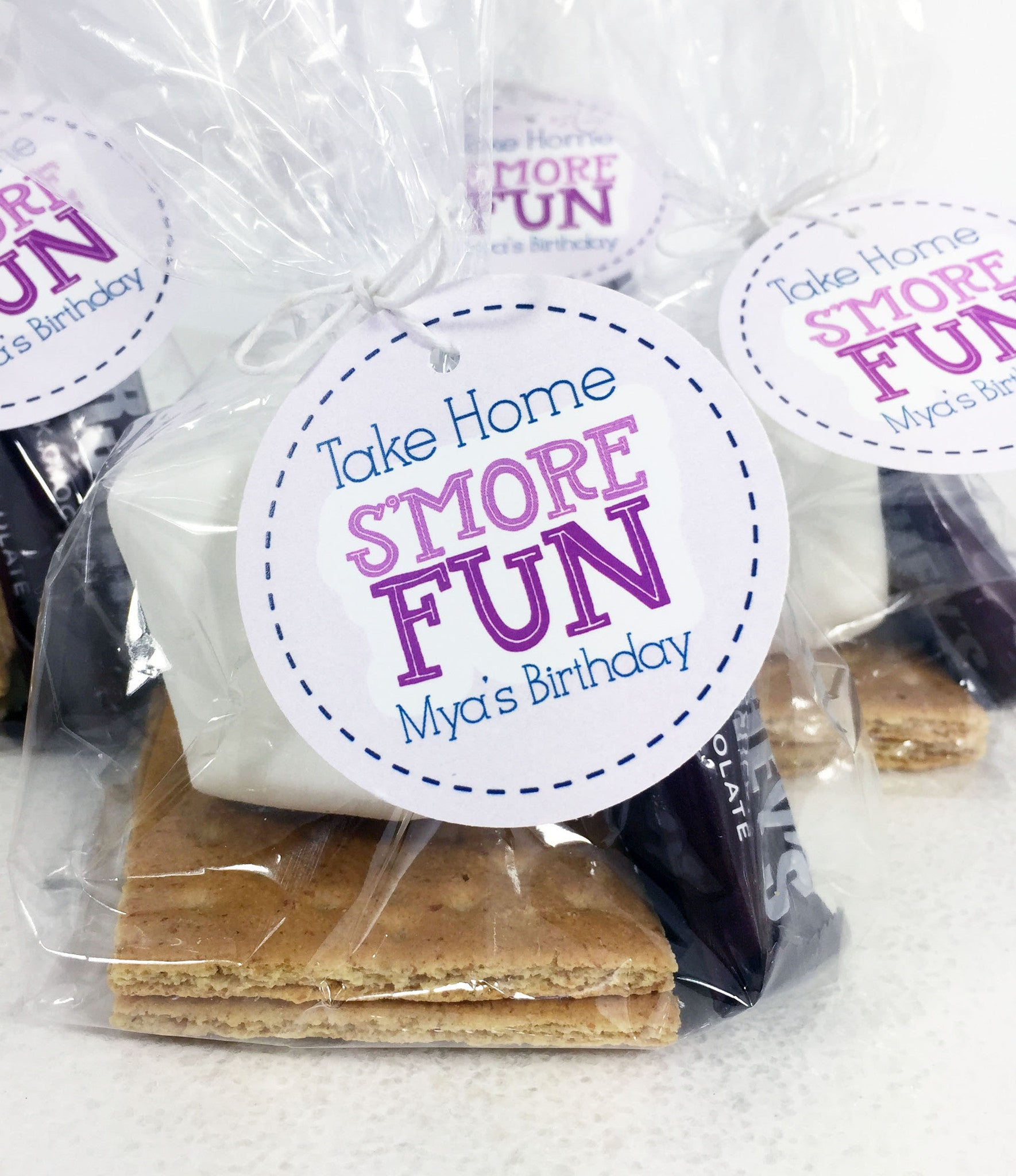 Smore Fun Birthday Party Tag - Invited Too