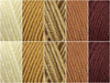 Biscotti Colour Pack in Deramores Studio DK