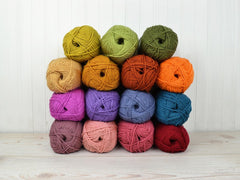 Stylecraft Cosy Colour Pack