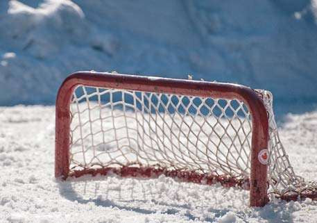 Pond Hockey Net 3 x 1-ft backyard rink