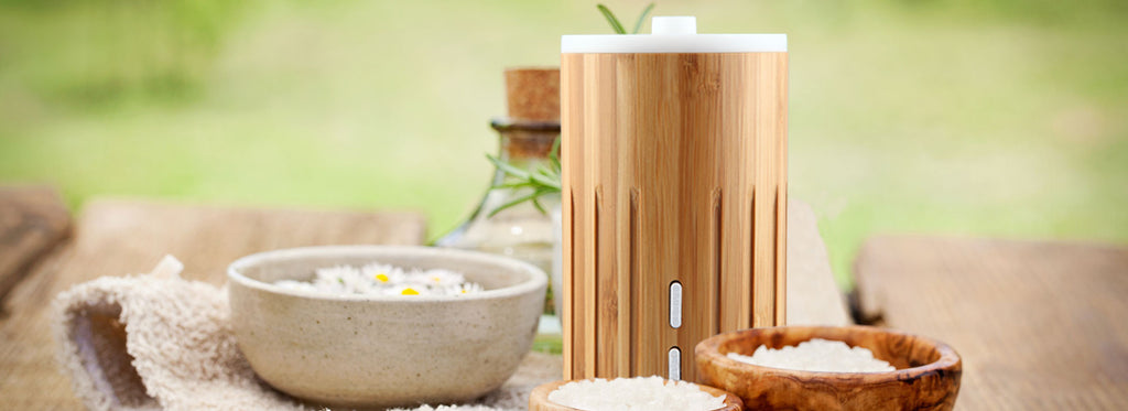 Discovering ZAQ's Diffusers: Bamboo