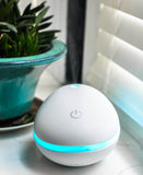 ZAQ Pebble Essential Oil Diffuer