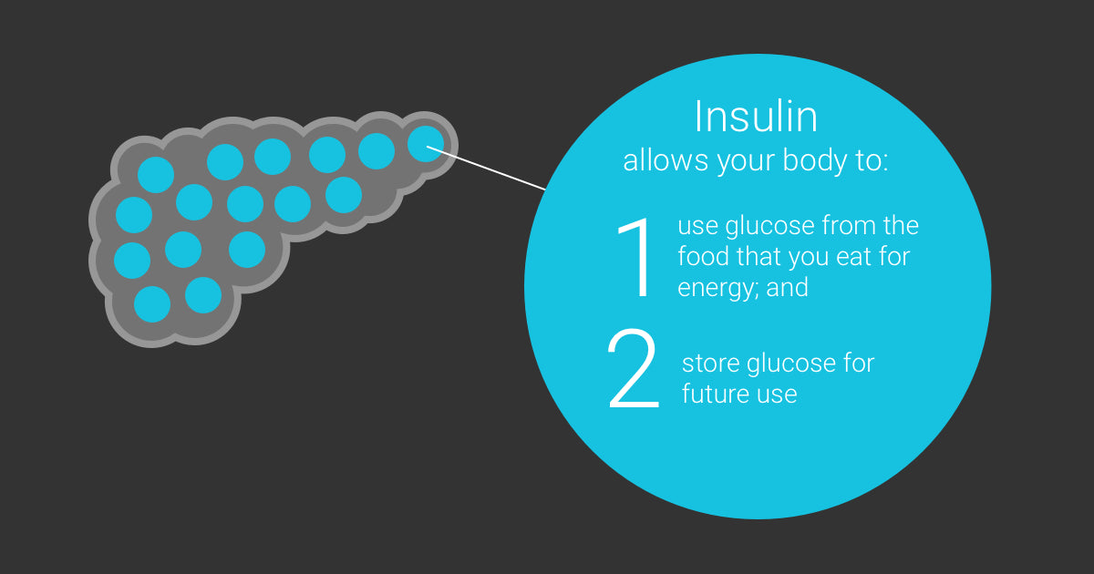 One Drop Guide to Insulin - guide to insulin - what is insulin - insulin infographic - guide to insulin - insulin guide - pancreas insulin - diabetes and insulin - insulin and diabetes