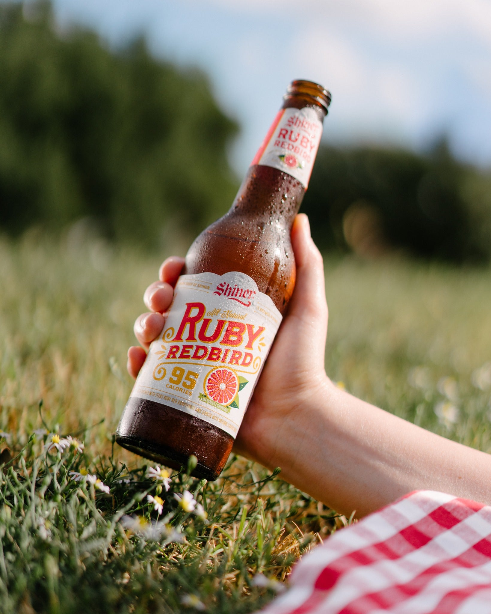 ruby redbird shiner - low carb beer - keto beer - best low carb beer - best keto beer