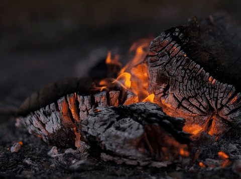 Safely extinguish the fire by dousing with water, stirring your coals and double checking.