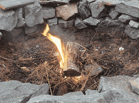 When gathering supplies make sure to use only dry dead wood for campfires.