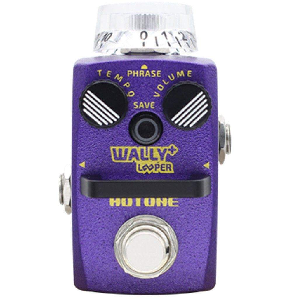Hotone Wally+ Loop Station Pedal-ThePedalGuy
