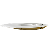 Foster Steel Golden Dish