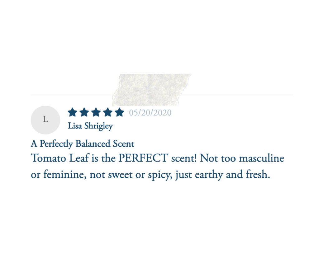 tomato leaf review
