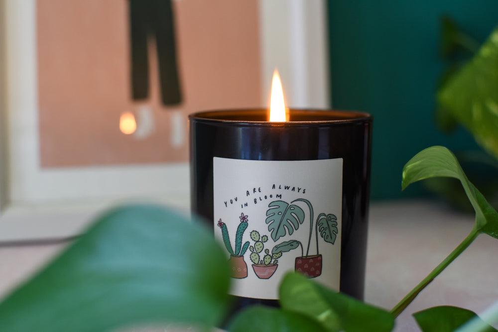 always in bloom candle by standard wax