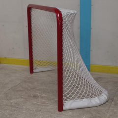 U8 Ice Hockey Net