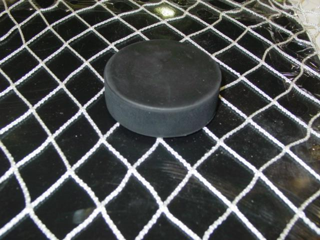 Arena Safety Netting- 10' x 20'
