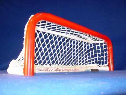 All Star Pond Hockey net
