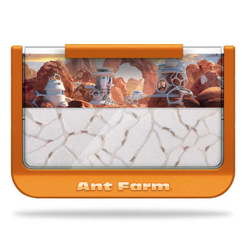 60th Ant-iversary Ant Farm® - Ant Canyon