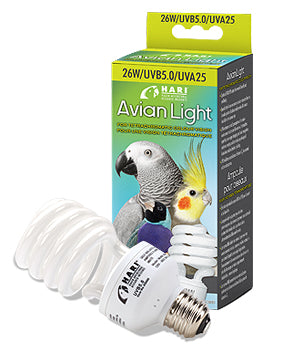 Hari Avian Light Bulb