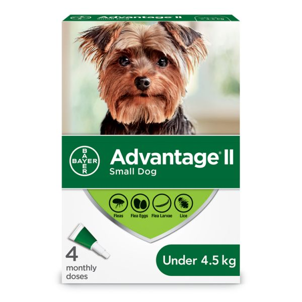 Advantage II Dog