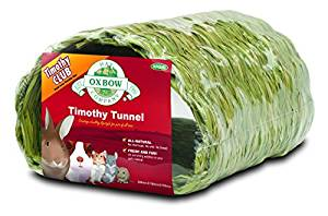 Timothy Tunnel